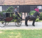 Horse and Carriage Hire in South Wales